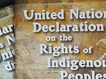 10 years of the UN Declaration on the Rights of Indigenous Peoples